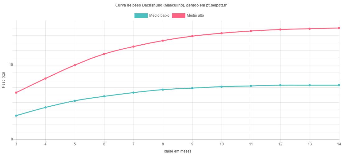 Curva de crescimento Dachshund masculino
