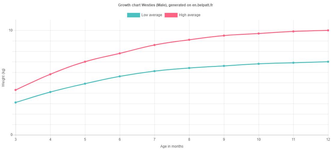 Growth chart Westies male