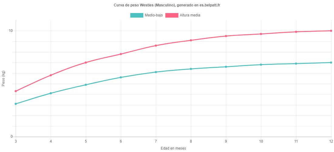 Curva de crecimiento Westies masculino