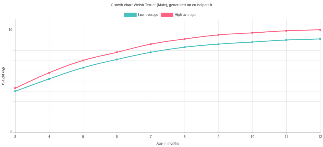 Growth chart Welsh Terrier male