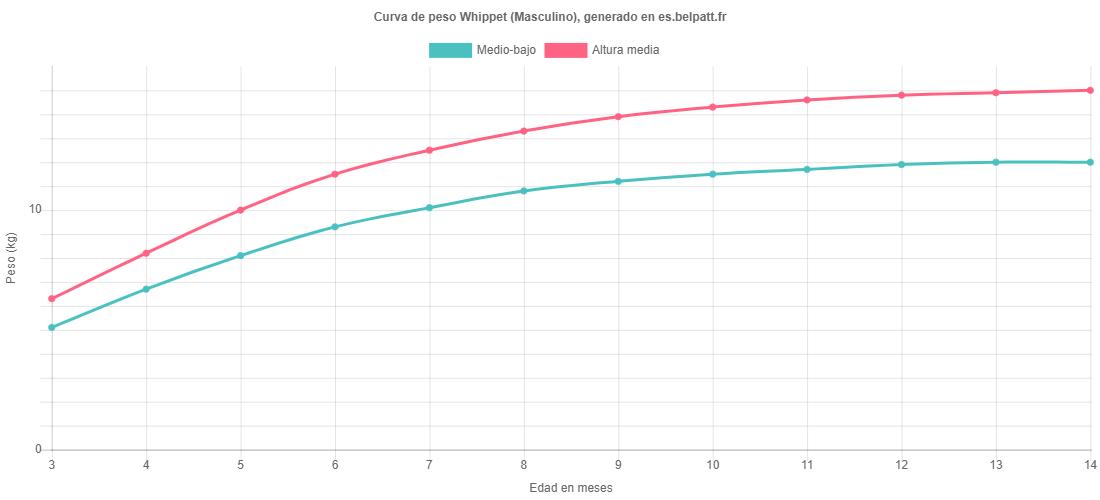 Curva de crecimiento Whippet masculino