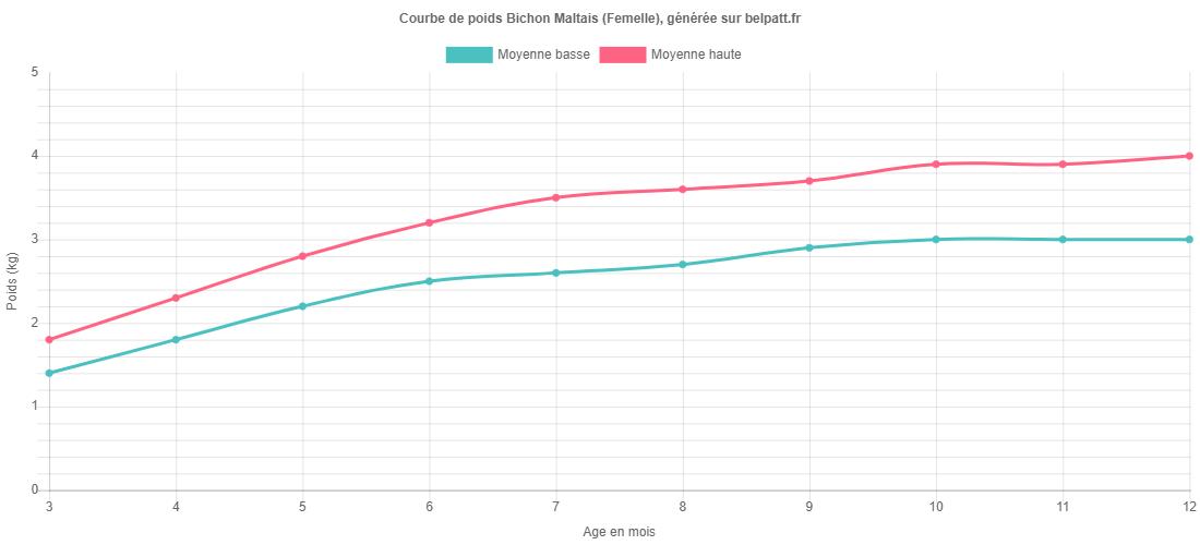 Croissance Bichon Maltais - La courbe de poids du chiot
