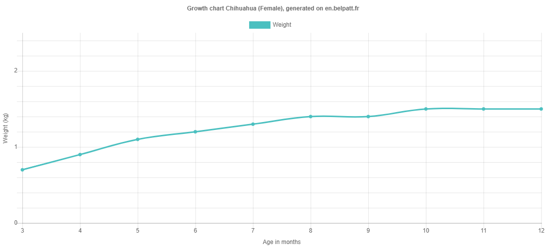 Growth chart Chihuahua female