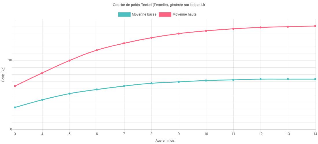 Croissance Teckel - La courbe de poids du chiot Teckel