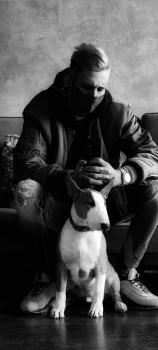 Roy, Bull Terrier