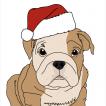 Elton, Bulldog